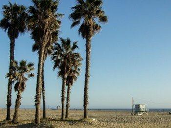 Der Santa Monica State Beach neben dem Pier
