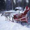 Santa Claus mit seinen Elfen und Rentieren.