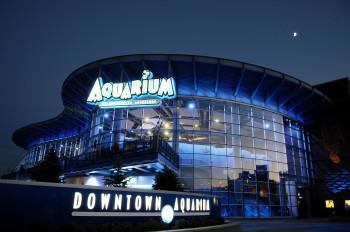 Blick bei Nacht auf das beleuchtete Downtown Aquarium in Denver, Colorado.