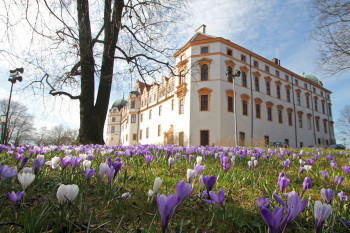 Das Schloss, eingebunden in die historische Altstadt, spiegelt in seinen Bauphasen die Entwicklung von der Burg bis zum Residenzschloss wider.