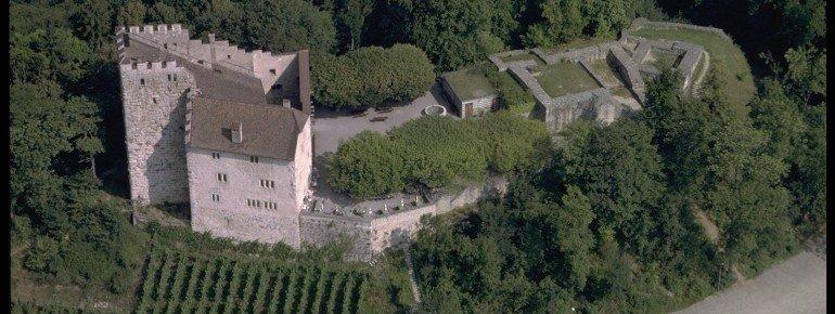 Schloss Habsburg Vogelperspektive