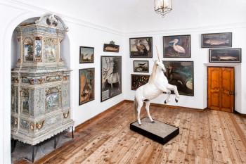 Schlossausstellung SchauLust