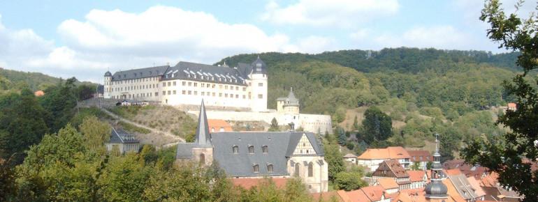 Schloss von der Lutherbuche aus