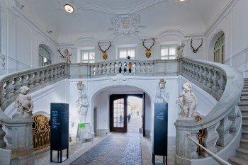 Diese imposante Treppe sowie Repräsentationssäle können im Rahmen einer Schlossführung besichtigt werden.