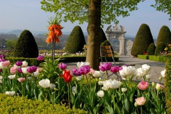 Blick in den Garten von Schloss Wildegg