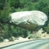 Der Tunnel Rock im Squoia.