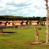 Giraffen, Grüne Meerkatzen, Spießböcke, Bongos, Moorantilopen und viele weitere Tierarten warten auf Besucher der Masai-Mara-Anlage.