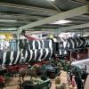 Diese Lokomotive ist Teil der militärhistorischen Ausstellung.