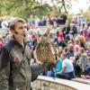 Ein echtes Highlight: Als Zuschauer bei einer Flugshow im Tierpark Berlin dabei zu sein!