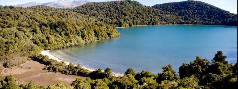 In den tieferen Lagen prägen Wälder einige Teile des Nationalparks.
