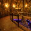 Die Höhlenwelt ist einer von drei Themenbereichen im Tropen-Aquarium.