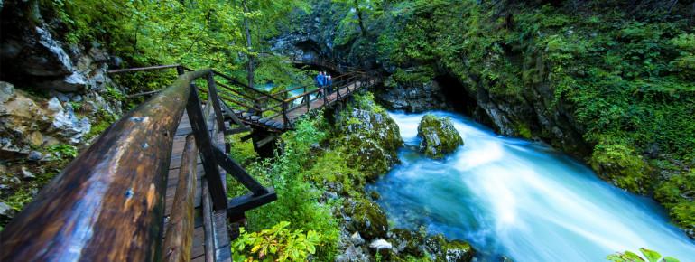 Im glas- klarem Wasser des donnernden Alpenflusses Radovna sausen Forellen umher.