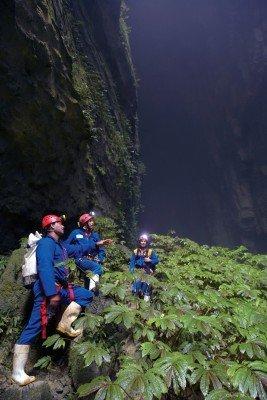 Die Waitomo Caves befinden sich auf der Nordinsel Neuseelands.
