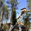 Der Baumwipfelpfad zählt zu den Hauptattraktionen des Freizeitparks.