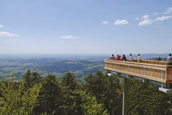 Auf der Aussichtsplattform hast du eine Sicht über den Bayrischen Wald und das Donautal.