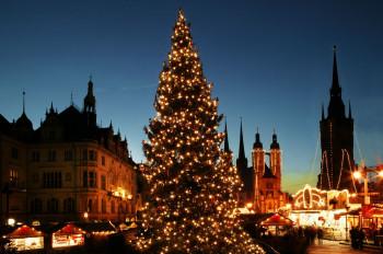 Der Weihnachtsbaum in Halle ist 15 Meter hoch.