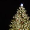 Der Weihnachtsbaum ist jedes Jahr unterschiedlich geschmückt.