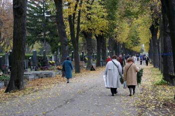 Der Wiener Zentralfriedhof zu Allerheiligen.