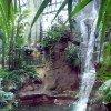 Der Bergregenwald im Amazonienhaus