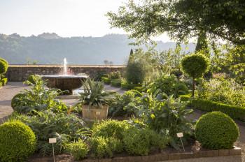 """Der Bastionsgarten wurde auf der Grundlage des Kupferstichwerkes """"Hortus Eystettensis"""" angelegt."""