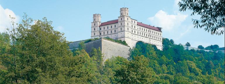 Die Burganlage liegt auf dem Willibaldsberg, über dem Altmühltal.
