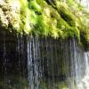 Als Natur- und Vogelschutzgebiet steht die Schlucht unter besonderem Schutz.