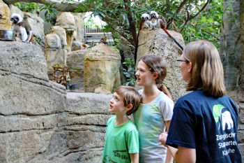 Der Zoo bietet Themenführungen, Kurse und Workshops zu den verschiedensten Bereichen an.