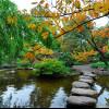 Der japanische Garten ist bereits seit 1918 eine Oase der Entspannung im Stadtgarten.