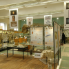 The Zoological Museum accommodates around 20,000 stuffed animals and skeletons