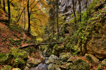 The Bärenschütz Gorge is open from May to October.