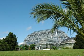 Big Palm House
