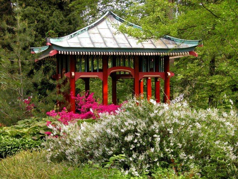 Garten berlin  Botanic Garden and Botanic Museum Berlin-Dahlem • Tourist ...