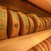 The cheese wheels are placed on several floors and are artfully illuminated.