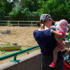 Mother and child watch a buffalo at Denver Zoo.