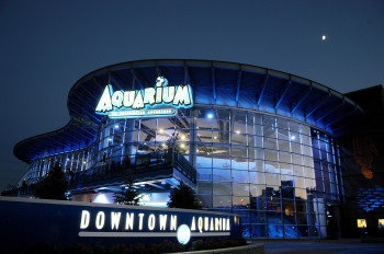 View of the Downtown Aquarium, formerly Colorado's Ocean Journey, at night.