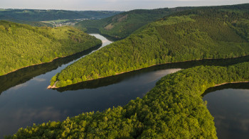 You can explore the pristine nature for hours on end at Eifel National Park.