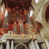 One of the four organs