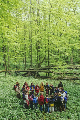 Guided tours help understand this natural environment.