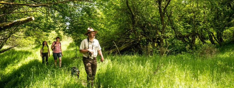 Trained rangers lead you through the flora and fauna.