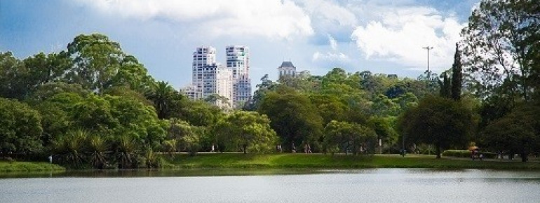 Lago do Ibirapuera