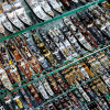 Deck 9 features 45,000 ship models.
