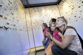 Since 2003 the museum has added a natural historical exhibition