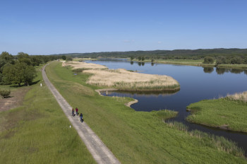 The various bike trails lead you through Lower Oder Valley National Park.