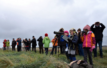 There is a lot to explore for the young and the old at the Lower Saxon Wadden Sea National Park.