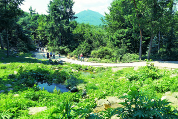 The circular trail through the park is about 800 meters long.