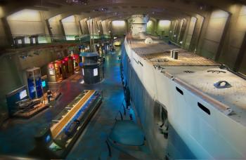 The German submarine 505