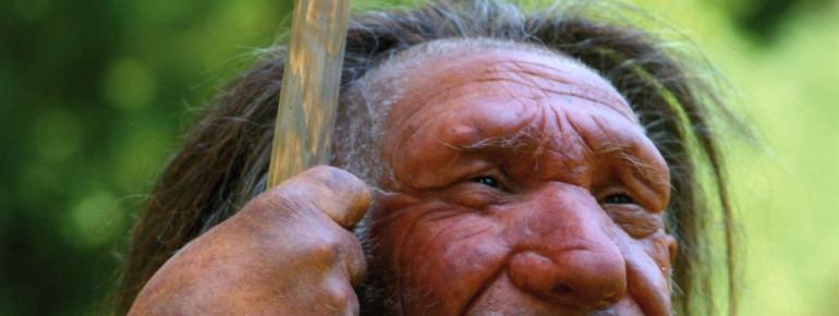 Neanderthal Mr. N