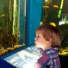 Explore marine life