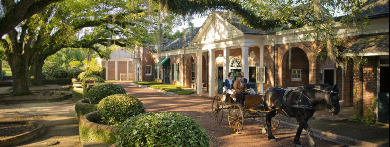 The idyllic environment of Pebble Hill Plantation is a perfect way to get away from everyday life for a while.