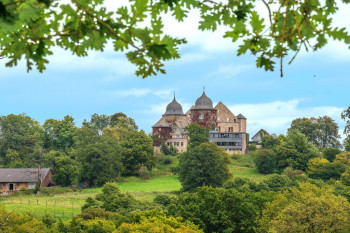 The Sleeping Beauty Castle is surrounded by a rose garden and lies in the middle of the Reinhard forest.